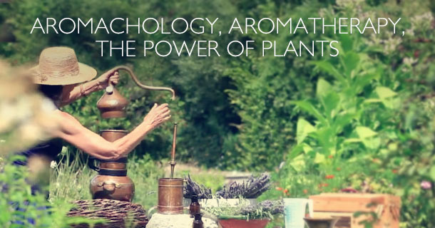 Aromachologie Body & Strength Collection